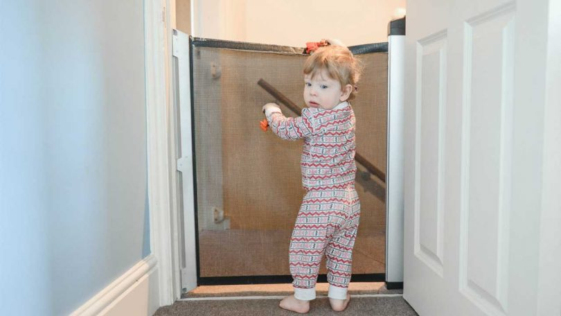 Best Retractable Baby Gates 2020 Find The Best Gate For Your Space